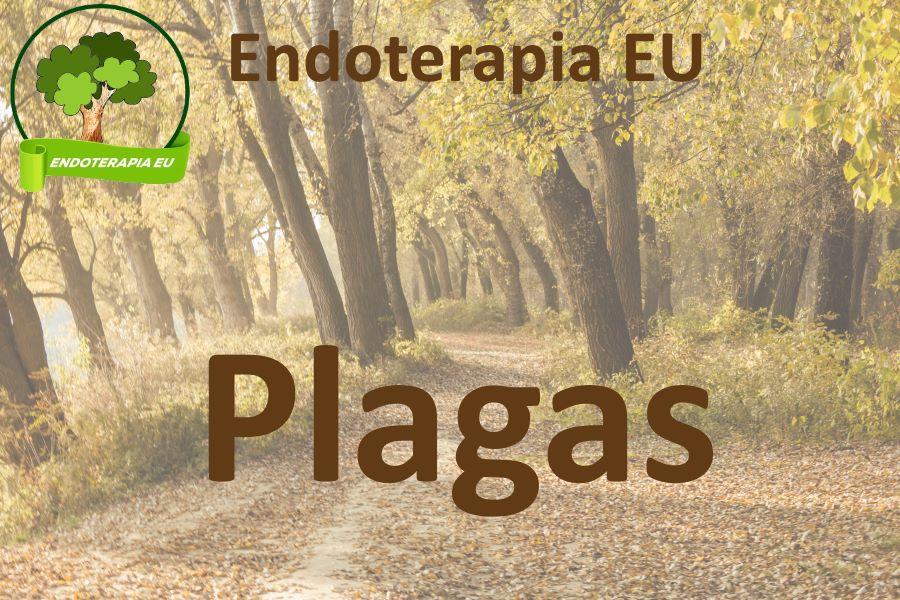 Plagas de árboles plantas y cultivos. Tratamientos de endoterapia