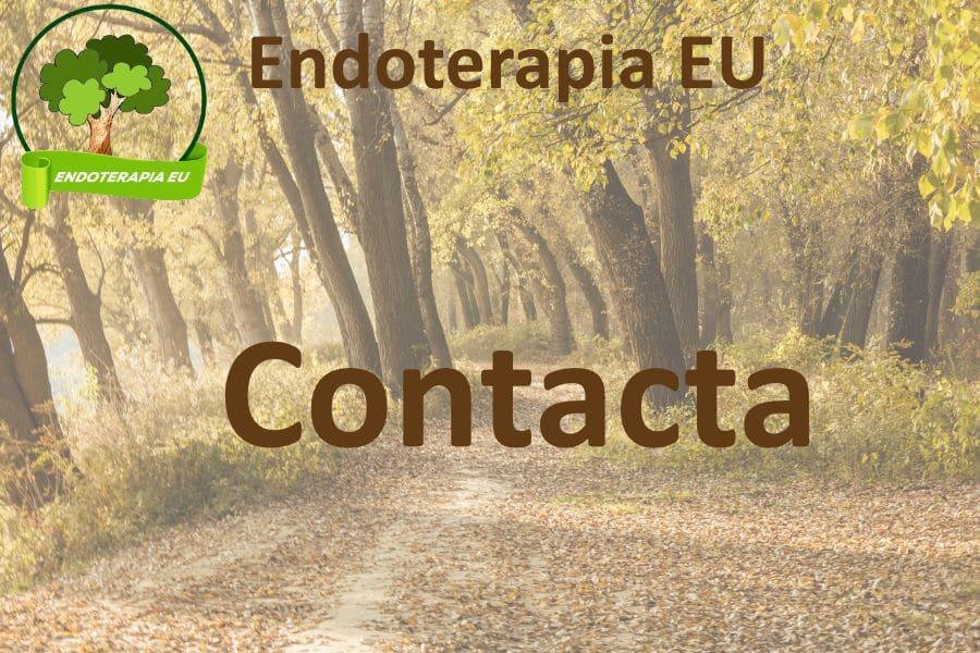 Contacta con nosotros. 20 años de experiencia en tratamientos de endoterapia