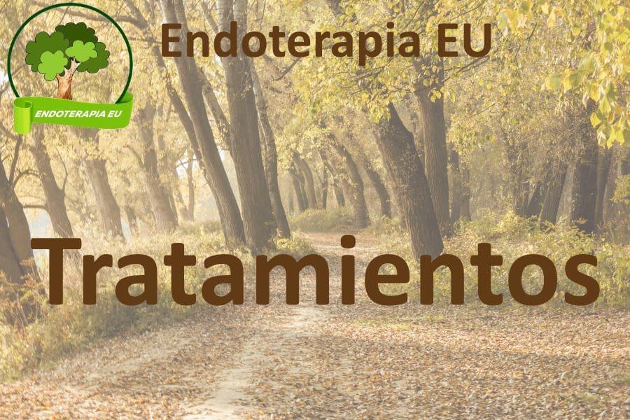 endoterapia.eu. Tratamientos de endoterapia en Castilla